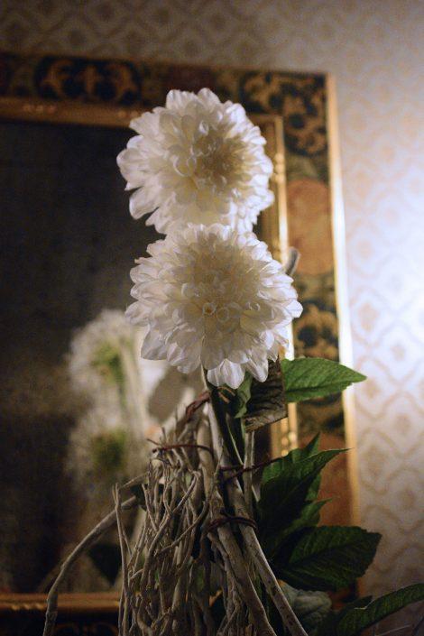 fiori bianchi venezia hotel centro